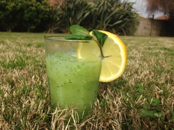 foto limonada2